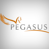 Pegasus: IT Value Acceleration Services